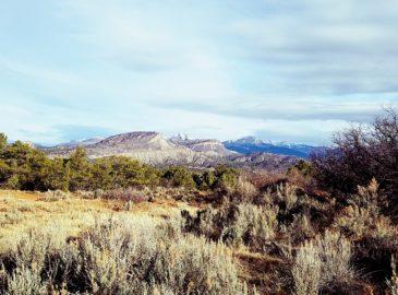 Durango Mesa Park Vision Begins to Take Shape
